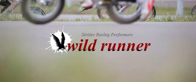 wild runner cup 2017
